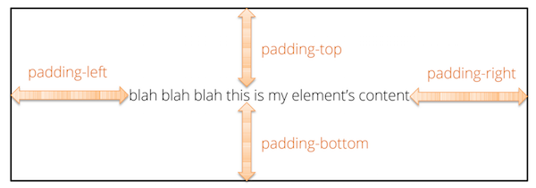 An element's padding.